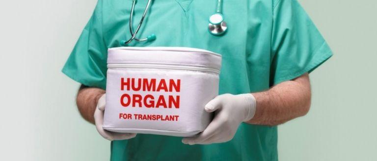 пересадка органов в Турции: клиники трансплантации Стамбула и Анталии